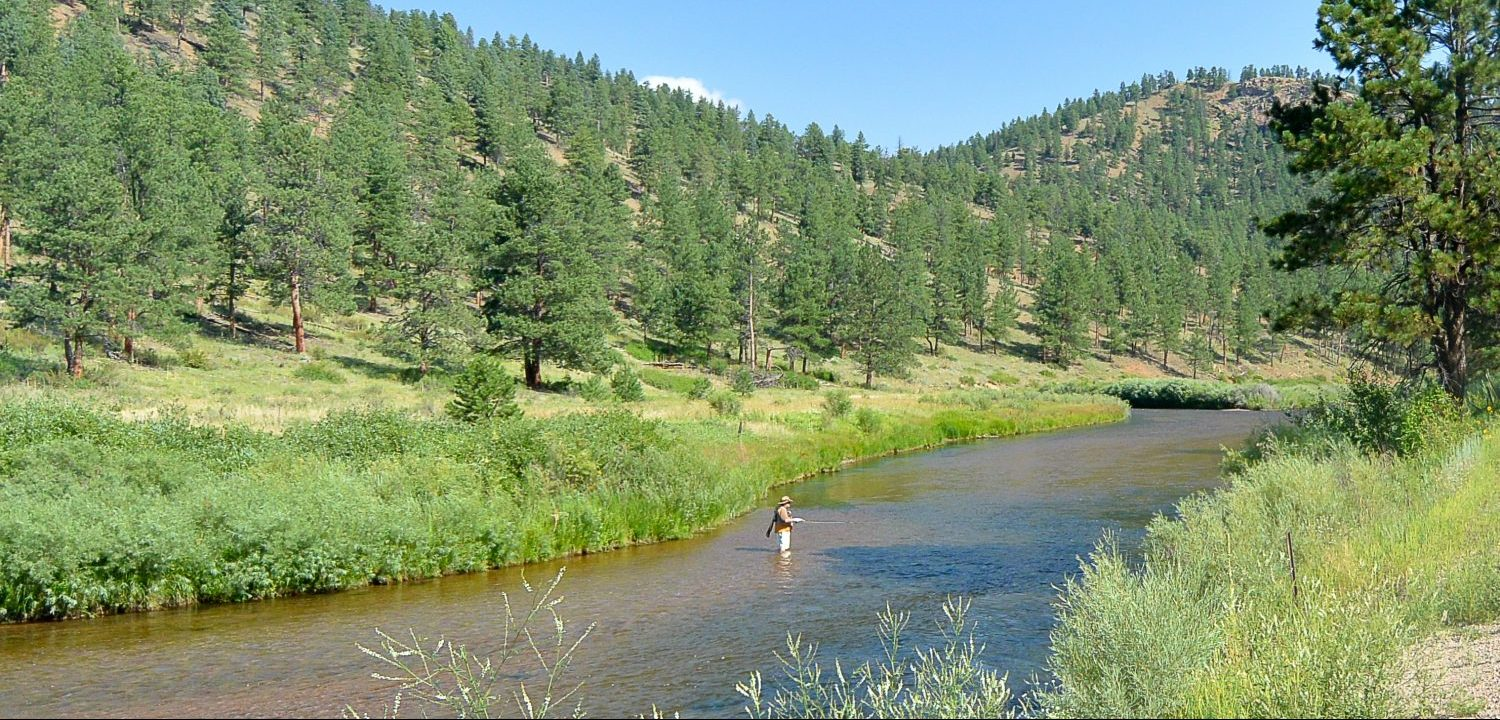 Fisherman in the South Platte River in the mountains
