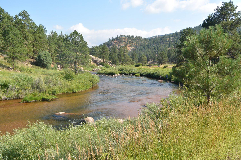 Upper South Platte River Photo
