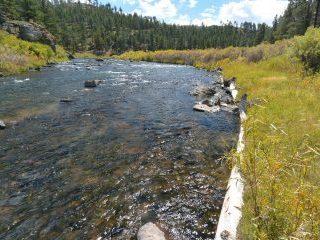 Riverbank log stabilization in the Upper South Platte
