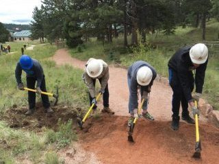 Four volunteers with pickaxes completing trail work